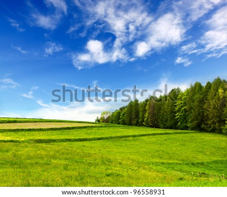 mountain landscape #96558931