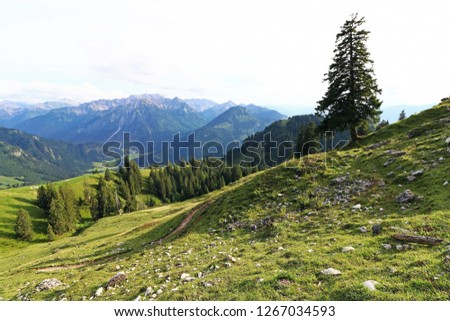 Mountain landscape and mountaineering in the Allgaeu Alps. Mountains in Oberjoch in Allgaeu