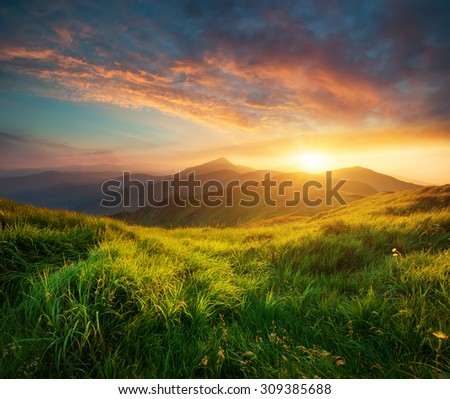 Mountain landscape during sunrise in the summer time. Natural summer landscape #309385688
