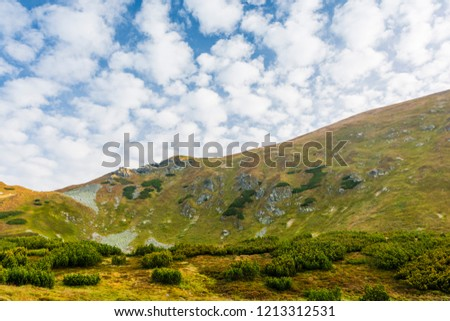 Mountain landscape. Gentle sloping grassy slopes in the Western Tatras. #1213312531