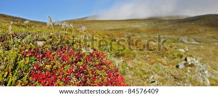 Mountain landscape in northern Scandinavia