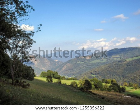 Mountain landscape in the French Pyrenees near the Pic du Canigou, Conigou massif with green summer vegetation and blue sky, Languedoc-Roussillon, Pyrenees-Orientales, France