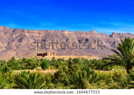 Photo of  Mountain landscape, Oasis of the Draa Valley, Morocco. Copy space for text