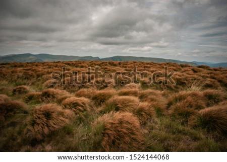 Mountain landscape over a gloomy sky #1524144068