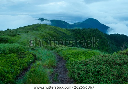 Mountain landscape. Summer evening in cloudy weather. Lush green grass