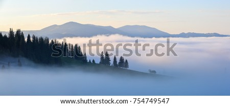 Mountain landscape. Sunrise in the clouds. Dense fog with nice soft light. A nice summer day.Panoramic view.