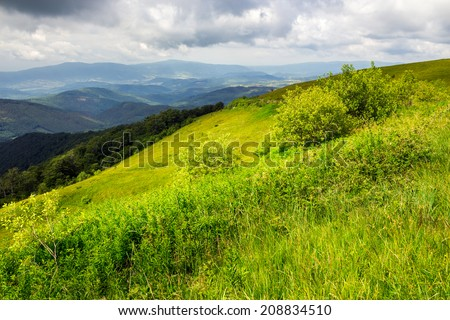 mountain landscape. valley near the forest on the mountain slope at the top of the hill at sunrise