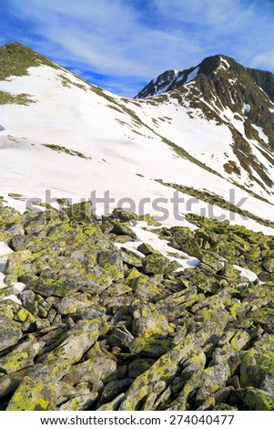 Mountain landscape with granite rocks above the melting snow in springtime