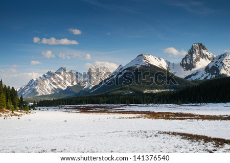 Mountain meadow in spring, Kananasksi Country Alberta Canada