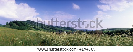mountain meadow in spring, Lower Beskids, Central Carpathians, Slovakia