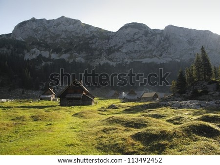 mountain meadow Planina V Lazu in Julian Alps in Slovenia
