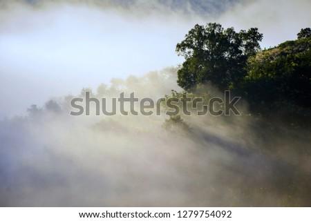 Mountain Mist in sunrise,mist on sunrise,mist over mountain during sunrise #1279754092