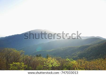 mountain morning sunshine                                                  #747033013