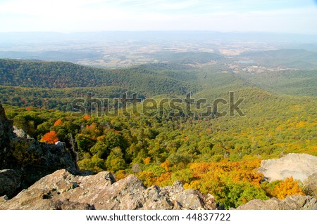 mountain overlook of hills with fall leaves