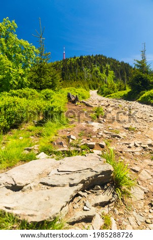 Mountain path from Lysa Hora summit, Beskydy, Czech republic, Europe Foto stock ©