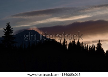 Mountain peak held in clouds with forest contour in foreground. Low morning light. #1340056013