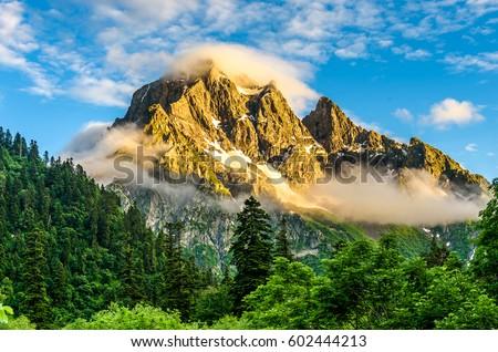 Mountain peaks in fog landscape