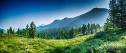 mountain range and evergreen trees, Khamar-Daban, Siberia, Russia, national park