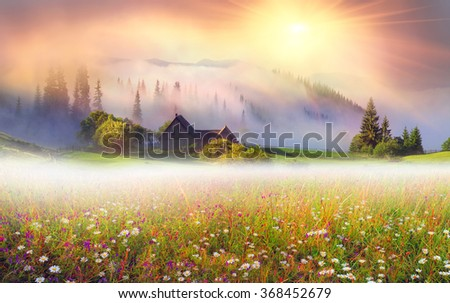 Mountain ranges of Ukraine with high alpine peaks and picturesque villages of the Carpathian attract tourists, sportsmen and artists with its beauty, naturalness, closeness to nature