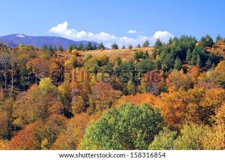 Mountain ridges glow with autumn color