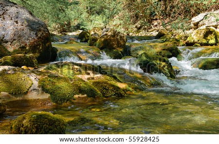Mountain river. A stream of water in forest and mountain terrain. Crimea, the Grand Canyon. #55928425