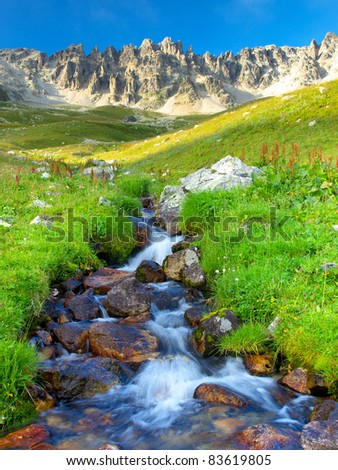Mountain river and green herb. Composition of the nature - stock photo