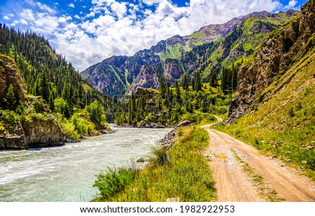 Mountain river between the rocks. River in mountains. River wild in mountains. Mountain river landscape