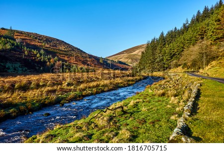 Mountain river creek landscape. River creek in mountains. Mountain river creek