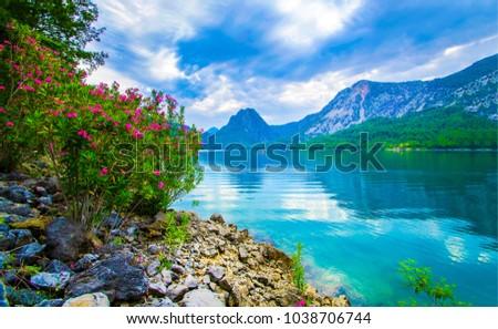 Mountain river flower bush landscape #1038706744