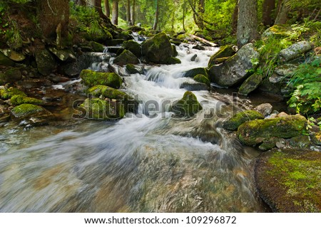 Mountain river flowing at summer forest landscape