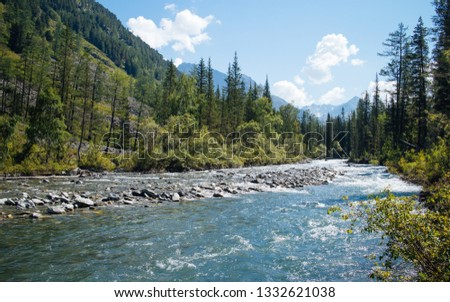 Mountain river in a mountain valley.