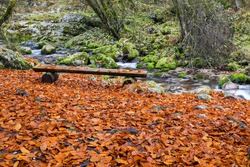 Mountain river in autumn colors with wood bench - Sunik water grove, river Lepenca, Bovec, Slovenia, water background, turquoise, river, stream, autumn leaf, stones, rocks, Soca valley, Triglav nation