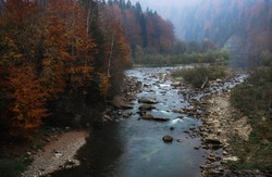 Mountain river in autumn time. Rocky shore. Colorful forest landscape