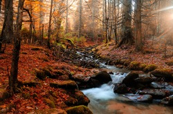 Mountain river in late autumn. Indian summer applied.