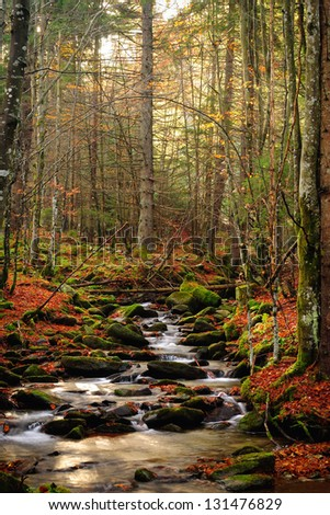 Mountain river in late Autumn. Sunrise