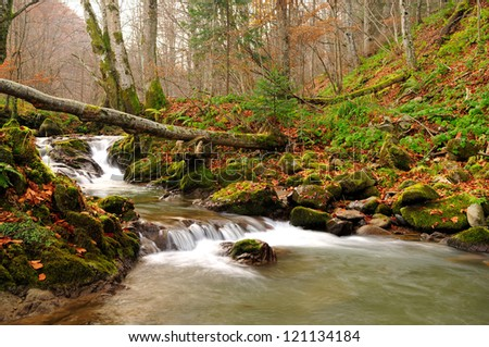 Mountain river in late Autumn with fallen tree