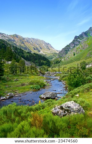 Mountain river in Pyrenees, France.