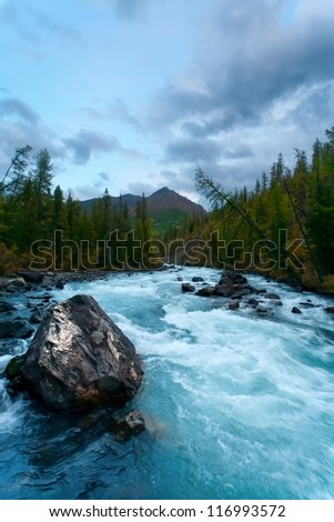 Mountain river in the evening, wood, Altai, Russia