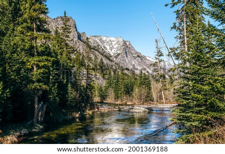 Mountain river in the forest. River in mountains. Forest river in mountains