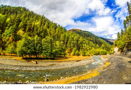 Mountain river in the valley of forests. River in mountains. Mountain river landscape. Mountain forest river landscape