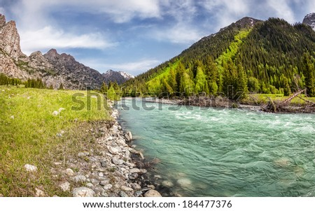 Mountain river in the valley with green trees in Dzungarian Alatau, Kazakhstan, Central Asia