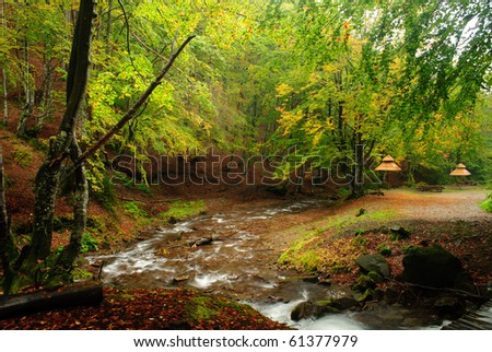 Mountain river is running down in autumnal forest