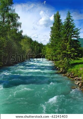 Mountain river Kucherla, forest, Altai, Russia