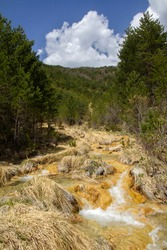 Mountain river of crystalline waters on a bed of yellow stones and dry grasses, Sorradipara canyon, Lubierre river, Borau, Huesca Pyrenees, Spain, vertical