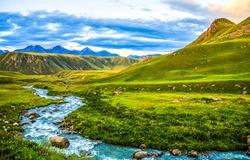 Mountain river stream panoramic landscape