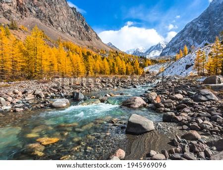 Mountain river stream valley in autumn scene. River creek in mountain valley. Autumn mountain river creek landscape