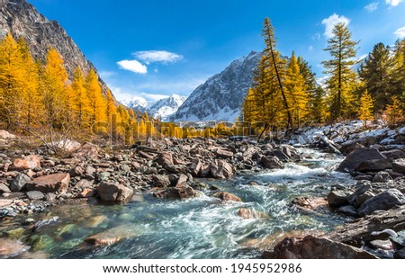 Mountain river stream valley landscape. River creek in mountains