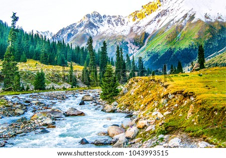 Mountain river valley landscape #1043993515