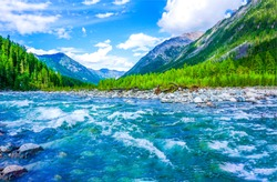 Mountain river water landscape. Wild river in mountains. Mountain wild river water view