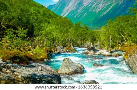 Mountain river wild landscape. River wild in mountains. River wild rocks